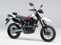 Kawasaki D-Tracker 2011