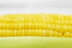 Sumo's Super Sweet Frozen Corn for Export