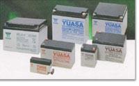 NP Series Industrial Batteries