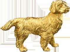 Zodiac Dog