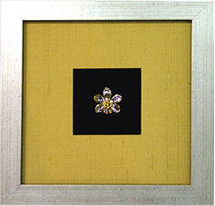 Framed Aranda Gold Star
