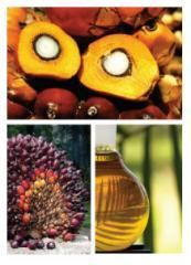 Jomalina's Guaranteed Quality Oil (JGQ™)