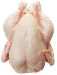 Chicken and chicken parts in stock for sell