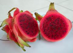 Exotic Fruits Red Dragon Fruit (Hylocereus polyrhizus)