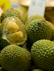 Exotic Fruits Jackfruit ( Artocarpus Heterophyllus