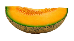 Tropical Fruits Cantaloupe or cantaloup or rock melon (Cucumis melo:muskmelon )