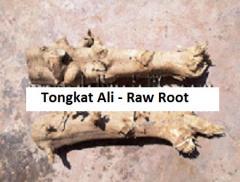 Raw Root (Tongkat Ali)