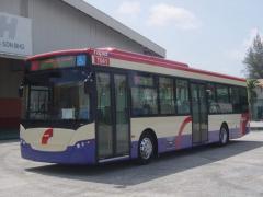 City & intercity bus