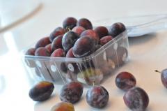 Exotic Fruits Australian Sugar Plum