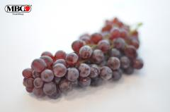Exotic Fruits Champagne Grapes