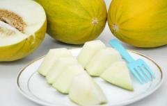 Exotic Fruits Heaven Melon