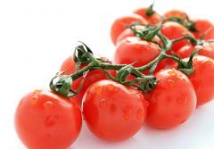 Organic vegetables cherry tomato