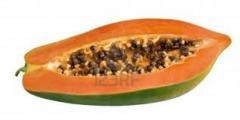 Organic fruits papaya exotica
