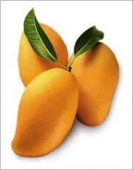 Exotic fruits mango imported