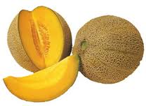 Exotic fruits rock melon imported
