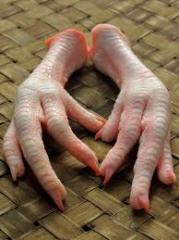 Chicken Feet Paw