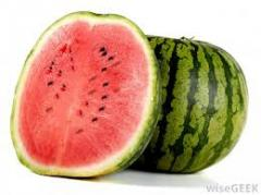 Watermelons Watermelons