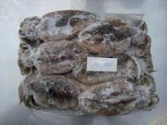 Frozen seafood Cuttlefish 100/200