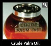 Palm Oil (Crude)