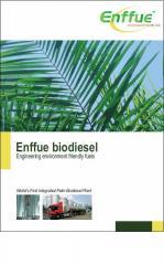 Biodiesel (Enffue)