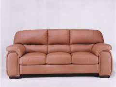 Furniture for home  sofa 7
