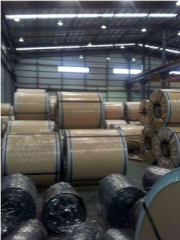 CRGO (Cold Rolled Grain Oriented Electrical Steel)