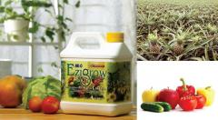Ezi grow fertilizer 4 liter