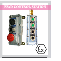 EExd Control Station