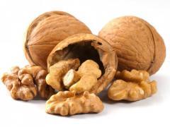 Dried Walnut In shell