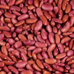 Red Kidney Bean/Dark Red Bean