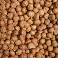Hazelnuts, Blanched Hazelnuts, Hazelnuts Inshell & Kernels, Organic Hazel Nuts