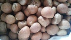 High Quality Dried Betel Nut