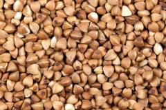 High Quality buckwheat Kernels /seed