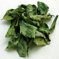 Dried Curry Leaves / Organic Curry Leaves Powder/ Bay Leaves / Bay Leaves Powder