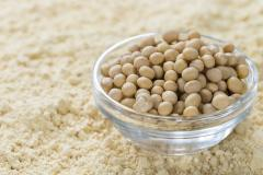 High Quality Soybean Protein Concentrate / Soy