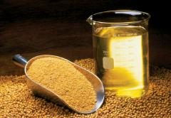 Top quality Expoxidized Soybean Oil