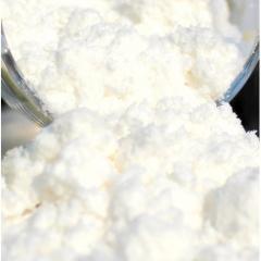 100% Natural Organic Coconut Milk Powder