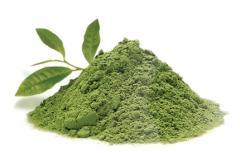 Top Quality Green Tea Matcha  Powder