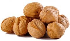 Walnus Nuts, Pili Nuts, Betel Nuts, Pinyon Nuts, Soy Nuts, Chestnuts, Ginkgo Nuts, Hazelnuts, Peanuts,  Pecan Nuts, Pine Nuts, Walnuts, Cacao Nuts, Macadamia Nuts, Water Chestnuts