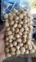 Premium Raw and Roasted Macadamia Nuts