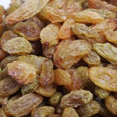 Dried Grapes Well Preserves /Good Shelf Life