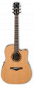 Acoustic Guitar AW250ECE