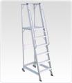 Warehouse Step Ladders