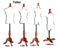 Tailor Torsos