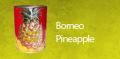Borneo Pineapple