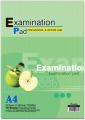 Examination Pad