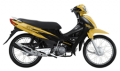 Electric Motorcycle CT100