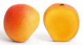 Fresh Fruits Mango (Mangifera Indica)