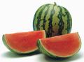Fresh Fruits Watermelon (Citrus Vulgaris)