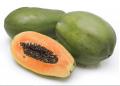 Fruits Papaya (Carica Papaya)
